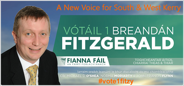 Fianna Fáil - #vote1fitzy - 23rd May 2014 you decide - I'm asking for your support